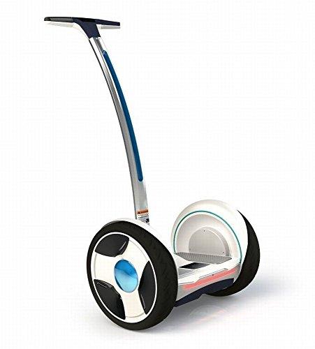 Personal Transporter Robot
